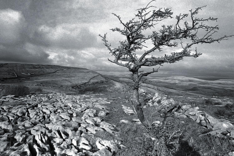 © Studio Niko : Irlande, An Bhoireannv (Burren)