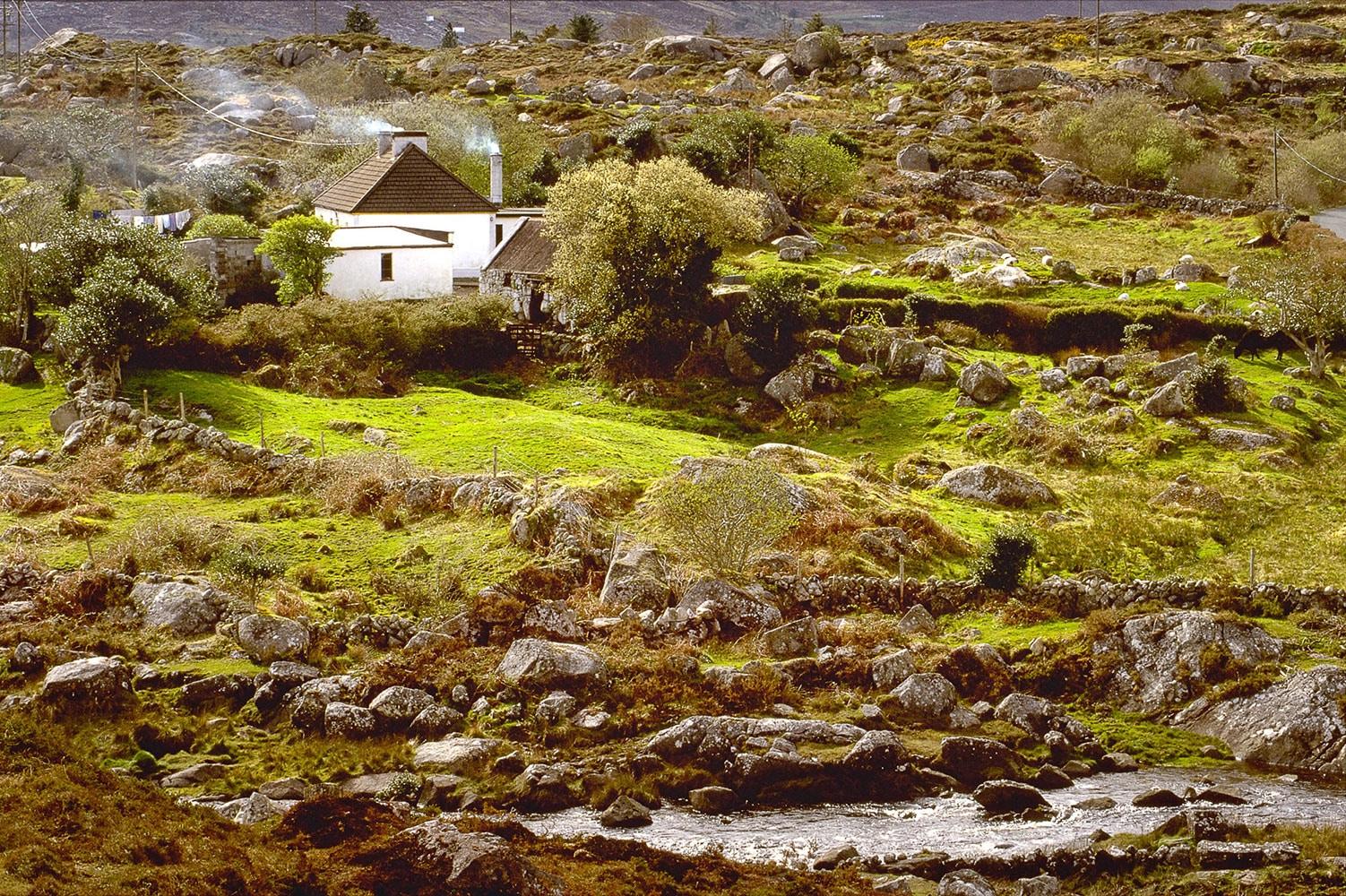 © Studio Niko: Paysage Irlande