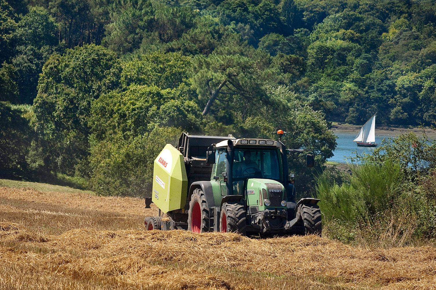 © Studio Niko : Agriculture dans le Golfe du Morbihan