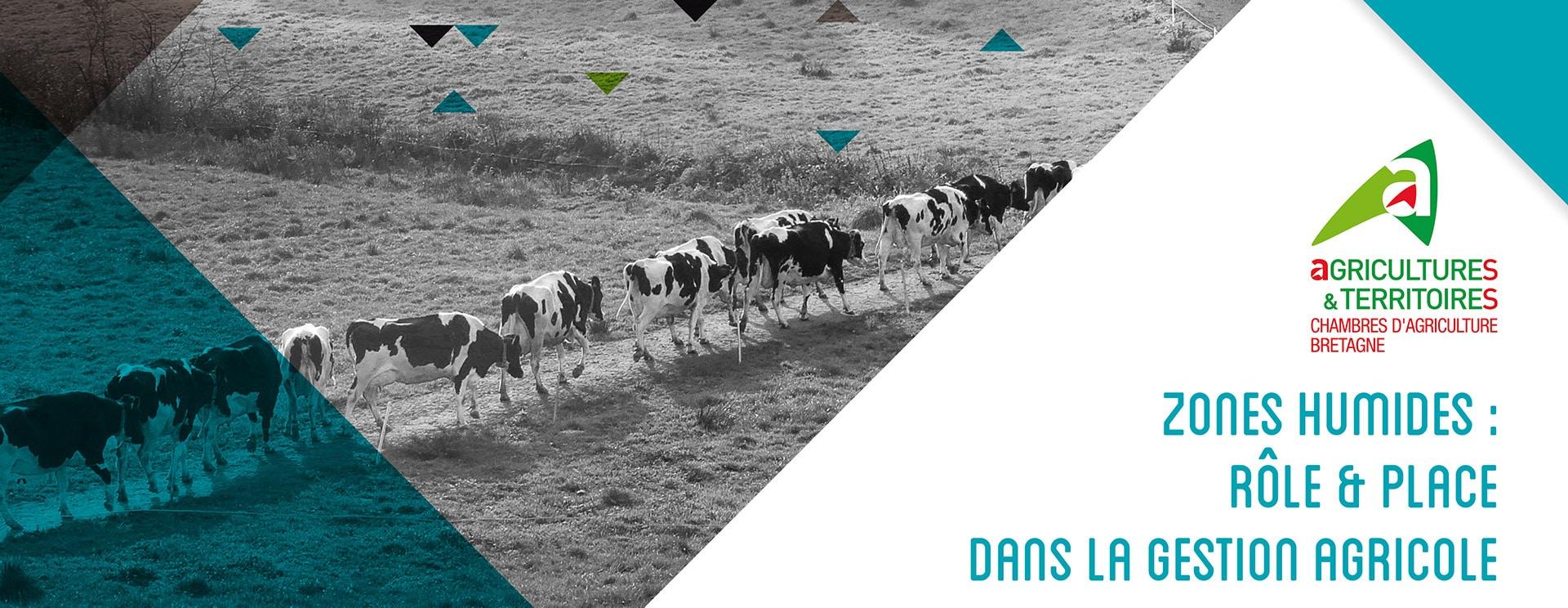 Guide des zones humides, communication Chambre agriculture de Bretagne